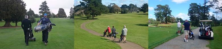 ニュージーランド ゴルフの特徴 カート 3
