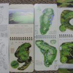 ニュージーランド ゴルフの特徴 セルフプレー