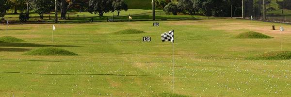 ニュージーランド ゴルフ打ちっぱなし練習場