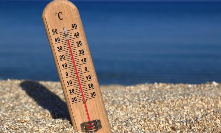 気温と天気予報