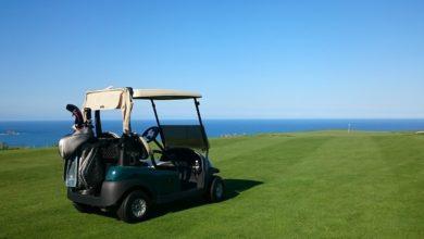 ニュージーランド ゴルフの特徴 カート