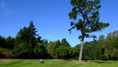 ニュージーランド ゴルフ 旅 感想 コメント 017