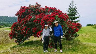 ニュージーランド ゴルフ 旅 感想 コメント 099