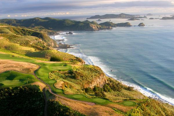 ニュージーランド ゴルフコース カウリクリフス